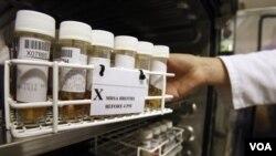 Obat-obat antibiotik ini tak akan ampuh lagi menyembuhkan bakteri yang memiliki gen NDM-1.