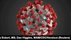 ပံုႀကီးခ်ဲ႕ထားေသာ 2019 Novel Coronavirus (2019-nCoV) ပိုးပံု။ (TPX IMAGES OF THE DAY - RC2WPE9B0G2T)