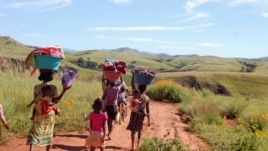 Women and their children walk to the river in the locust infested area in the Vakinankaratra region of central Madagascar, March 30, 2013.