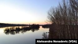 Pogled sa Beljarice na Dunav gde bi po projektu trebala da bude luka, Foto; Glas Amerike