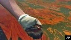Oil off the coast of Louisiana
