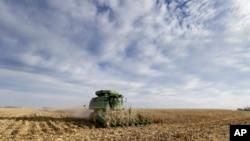 爱奥华州一家农场的玉米田(资料照)