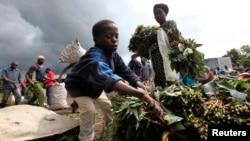 A boy sells Cassava leaves at a market in Bunagana, eastern Democratic Republic of Congo, Oct. 19, 2012.