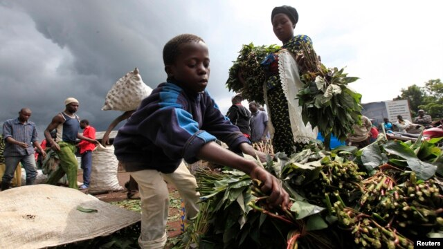 A boy sells Cassava leaves at a market in Bunagana, eastern Democratic Republic of Congo, Oct. 19, 2012.