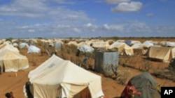 Kenya: Qaxooti Dalka Somalia ku Noqonaya
