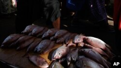 Du poisson vendu au marché central de Banjul, Gambie, 23 septembre 2006.