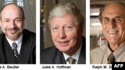 Dobitnici Nobelove nagrade za medicinu Brus Bojtler, Žil Hofman i Ralf Stajnmen koji je preminuo 30. septembra