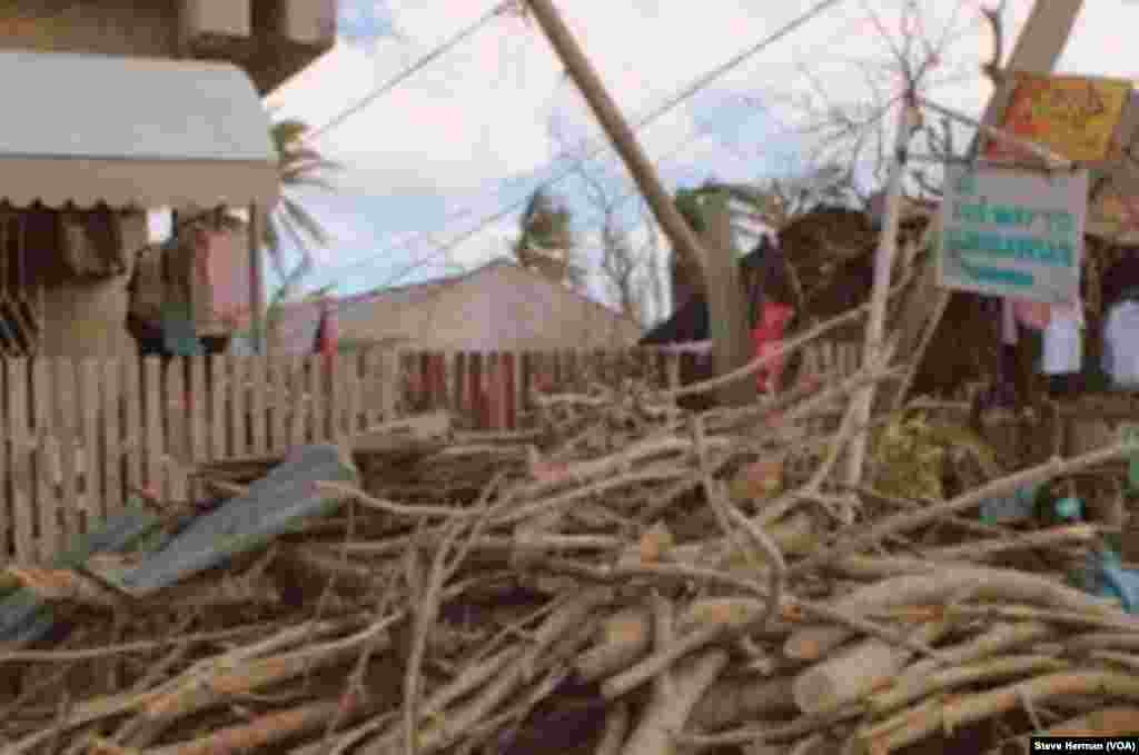 Limbs from downed trees are piled up in a severely damaged village in Cebu, Philippines, Nov. 14, 2013. (Photo: Steve Herman / VOA)