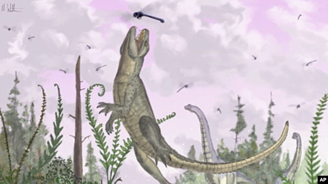 When crocodiles tried to be mammals: the Cretaceous crocodilan /Pakasuchus kapilimai/, with a complete set of mammal-like teeth hunts dragonflies on an ancient Tanzanian floodplain