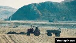 논밭을 정리하는 북한 평양의 농부. (자료사진)