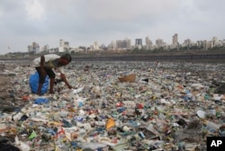 FILE- In this June 4, 2018, photo, a man collects plastic and other recyclable material from the shores of the Arabian Sea, littered with plastic bags and other garbage, in Mumbai, India. (AP Photo/Rafiq Maqbool, File)