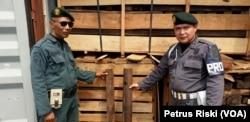 Petugas bersama barang bukti kayu eboni. (Foto: VOA/Petrus Riski)
