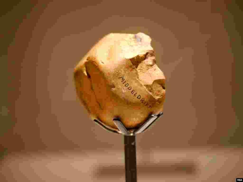 南非发掘的两百万年前的石器,用来打碎骨头 (美国之音国符拍摄)
