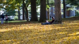 A student studies on the quad at Amherst College, a liberal arts school in western Massachusetts.