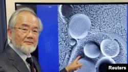 Le prix de Nobel de médecine a été attribué au professeur Yoshinori Ohsumi du Tokyo Institute of Technology, pris en photo à Tokyo, le 25 mars 2015.