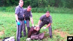 Police officers stand over convicted murderer and prison escapee David Sweat after he was shot and captured near the Canadian border, June 28, 2015, in Constable, New York.