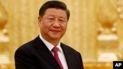 Си Цзиньпин (архивное фото)