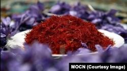 زعفران کاران هرات سال گذشته ۴۵۰۰ کیلوگرام زعفران تولید داشتند