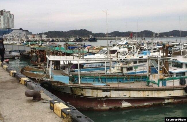 Pelabuhan perikanan di Wando, Korea Selatan. (Foto courtesy: Ari Purboyo)