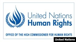 BMT-nin İnsan Haqları üzrə Ali Komissarlığı