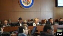 El canciller boliviano, Diego Pary, se encuentra de nuevo ante el Consejo Permanente de la OEA en donde denuncia a la oposición por la violencia vivida tras las elecciones presidenciales.