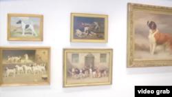 犬類博物館內的展品。(視頻截圖)