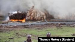 Kenya Cumhurbaşkanı Uhuru Kenyatta (sağda) ve Gabon Devlet Başkanı Ali Bongo Ondimba, yanan fildişi yığınlarının önünde poz verirken
