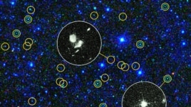 This zoomed-in view of a portion of the all-sky survey from NASA's Wide-field Infrared Survey Explorer shows a collection of quasar candidates. Quasars are supermassive black holes feeding off gas and dust. (NASA)