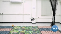 World's Smallest Drones Could Revolutionize Agriculture, Search and Rescue Efforts