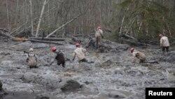 救援人員在華盛頓州西雅圖北部泥石流現場進行拯救工作