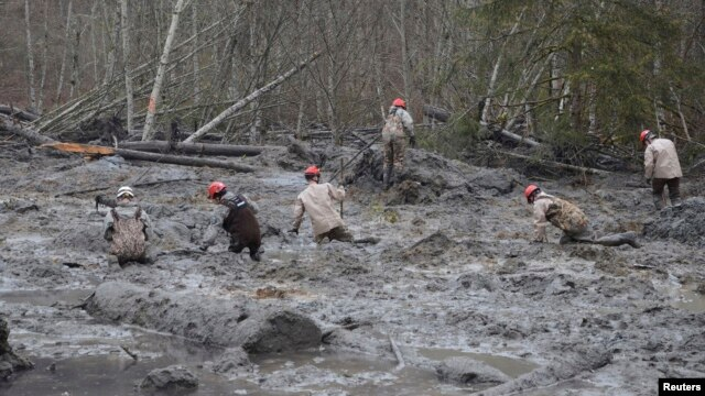 Rescue workers make their way through the mud and wreckage left behind by Saturday's mudslide as they look for signs of missing people, in Oso, Washington, March 27, 2014.