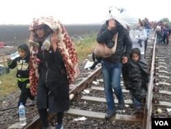 A constant steam of migrants arriving despite rain Thu in border town Röske, Hungary from Serbia. (A. Tanzeem/VOA)