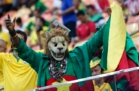 Can Cameroon pounce on Brazil?