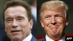 This file combination of pictures created on January 6, 2017 shows recent pictures of US actor and former governor of California Arnold Schwarzenegger (L) and US President Elect Donald Trump.