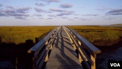 One escapes to Cape Cod, in part, for peaceful scenes such as this footbridge that leads toward Barnstable Harbor. (Carol M. Highsmith)