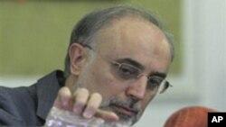 ایران ہمسایہ ممالک اور یورپی یونین کے ساتھ اچھے تعلقات چاہتا ہے: علی اکبر صالحی