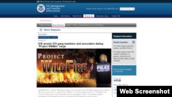 """美国移民及海关执法局""""野火""""行动的海报(网站截图)"""
