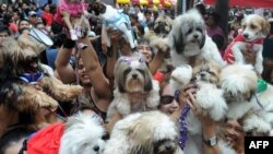 FILE - Owners raise their pets for a blessing from the Roman Catholic church to celebrate World Animal Day in Manila.