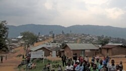 Deux chefs rebelles hutu des FDLR extradés vers le Rwanda selon le gouvernement
