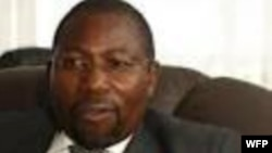 MDC-T deputy treasurer general Elton Mangoma.