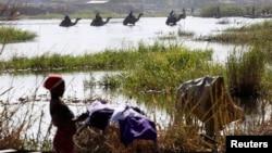尼日利亞難民繼續逃離戰亂地區