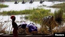 2015年1月19日尼日利亚人逃离博科圣地袭击不断进入乍得