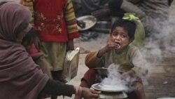 کابينه هندوستان لايحه ملی امنيت غذايی را تصويب کرد