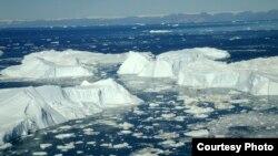 Sante leta u Džejkobšonu, jednom od četiri glečera koje naučnici obično koriste kao model za praćenje aktivnosti svih glečera na Grenlandu