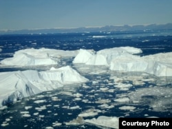 Icebergs at Jakobshavn, one of four glaciers that scientists typically use to model the activity of all Greenland glaciers. The new study finds that this method of modeling is too simplistic to accurately capture how Greenland's ice is truly changing.
