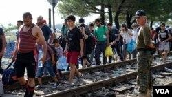 Des migrants marchent le long d'un chemin de fer.