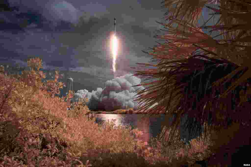A SpaceX Falcon 9 rocket amd Crew Dragon spacecraft carrying NASA astronauts Robert Behnken and Douglas Hurley lifts off in this false color infrared exposure at the NASA's Kennedy Space Center in Cape Canaveral, Florida, May 30, 2020.