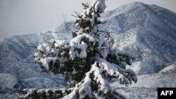 Salju menyelimuti Taman Nasional Angeles di Los Angeles, California, 26 Desember 2019. (Foto: AFP)