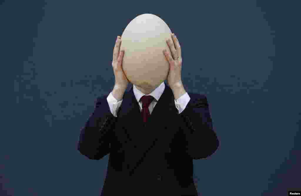 Nhân viên cừa hàng bán đấu giá Christie's ở London giới thiệu quả trứng Chim Voi lớn nhất từ trước đến nay. Quả trứng hiếm quý đã hóa thạch đã có từ trước thế kỷ 17 này có thể bán được từ 30.000 đến 45.000 đôla. Chim Voi sống ở Madagascar đã bị tuyệt chủng và có chiều cao khoảng 3 mét.