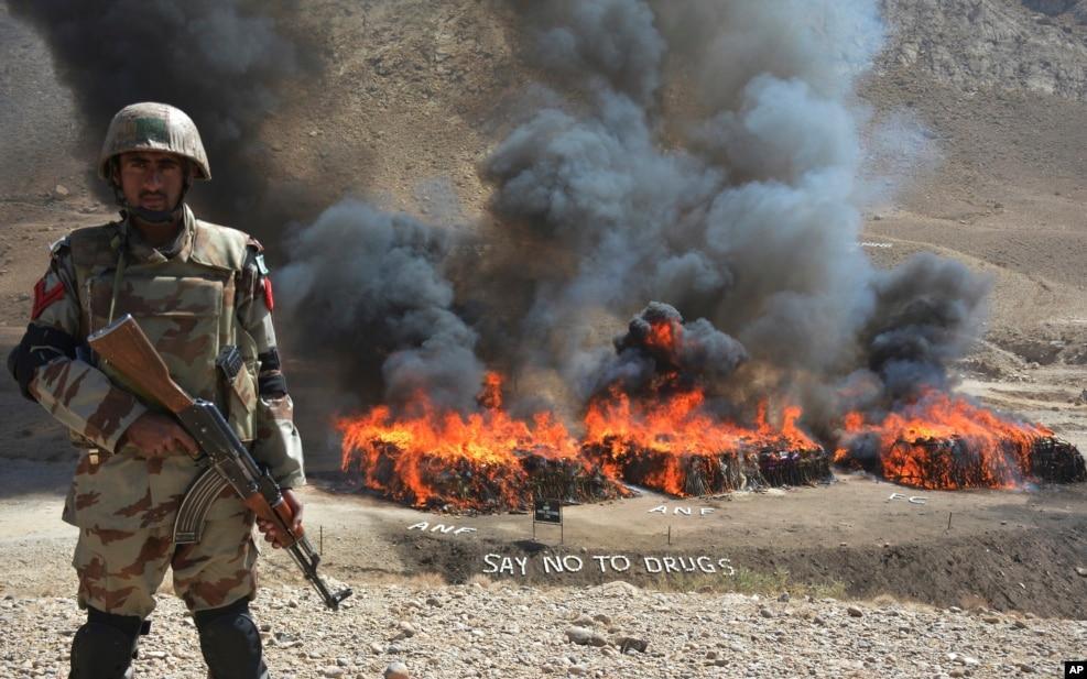 Pakistan - Narkotik Maddələrə Nəzarət Ordusu müsadirə edilən narkotik maddələri yandırır